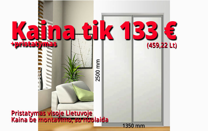 Stumdomos durys kaina 133 € pavyzdys Nr. 2