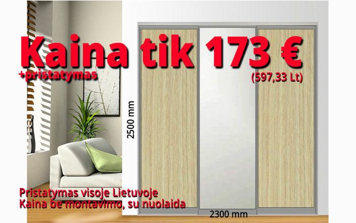 Stumdomos durys kaina 173 € pavyzdys Nr. 6